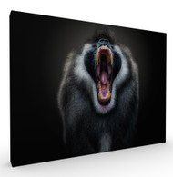 The Scream Wildlife Art Print by Pedro Jarque, Stretched Canvas