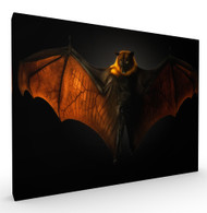 Wings of Desire Wildlife Art Print by Pedro Jarque, Stretched Canvas