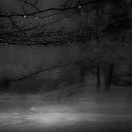 Rainy and Misty by Marek Boguszak Art Print