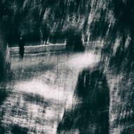 Looking For by Bernardo Dadic Art Print
