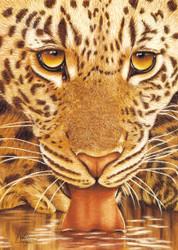Leopard Drinking by Lori Watson African Art