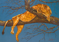 Lioness Sleeping by Lori Watson African Art