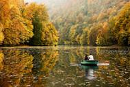 Autumn Idyll by Jimbi Landscape Print