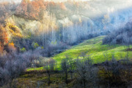 November Colors by Adrian Popan Landscape Print
