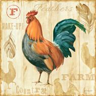 Joli Rooster IIC