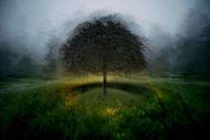 Eden Place by Milan Malovrh Landscape
