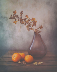Fall by Sophie Pan Art Print