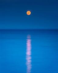 Blue Moon by Qun Zhou Seascape Print