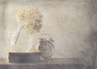 Disillusionment of Nine O Clock by Delphine Devos Art Print