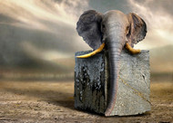 Solid as A Rock by Ben Goossens Surrealism Print