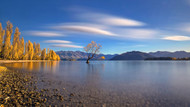 Autumn in Lake Wanaka of Heart by Hua Zhu Landscape Print