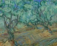 Vincent van Gogh Print Olive Grove II