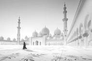 Sheikh Zayed Mosque by Hussain Buhligaha Architecture Print