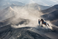 The Horseman by Gunarto Song Landscape Print