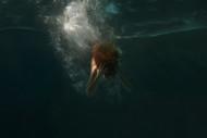 Underwater by Birja Lopez Ferrer Seascape Print