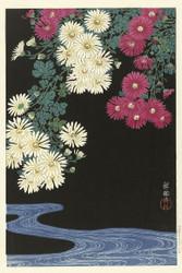 Japanese Print Chrysanthemums and Running Water by Ohara Koson