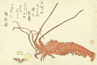 Japanese Print Lobster with Shells by Kubota Shunman Art