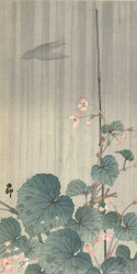 Begonia in the Rain by Ohara Koson Japanese Woodblock