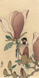 Bird on Flowering Magnolia Branch by Anonymous Japanese Woodblock