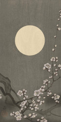 Blossoming Plum Blossom at Full Moon by Ohara Koson Japanese Woodblock