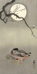 Ducks at Full Moon by Ohara Koson Japanese Woodblock