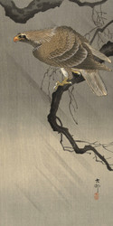 Eagle on Branch by Ohara Koson Japanese Woodblock