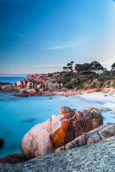 Bay of Fires (P) by Andrew Wilson Seascape Print