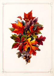 Autumn Leaves  By L Prang Co Floral Print