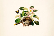 Bumblebee Blossom And Bird S Nest By L Prang Co Floral Print