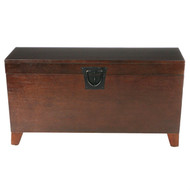 Contemporary Lift Top Coffee Table Storage Trunk in Espresso Finish CLT148958514