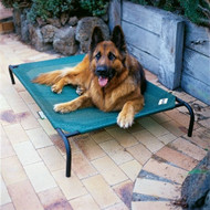 Large Elevated Indoor/Outdoor Dog Cot in Brunswick Green LBGDC43
