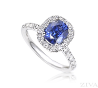 Ziva Cushion Cut Sapphire Ring with Diamond Halo