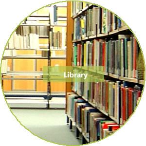 8.library.jpg