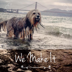 San Francisco Raw Pet Food