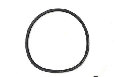 Poolrite Enduro Cartridge Filter Lid O'Ring