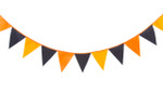 Orange and Black Bunting