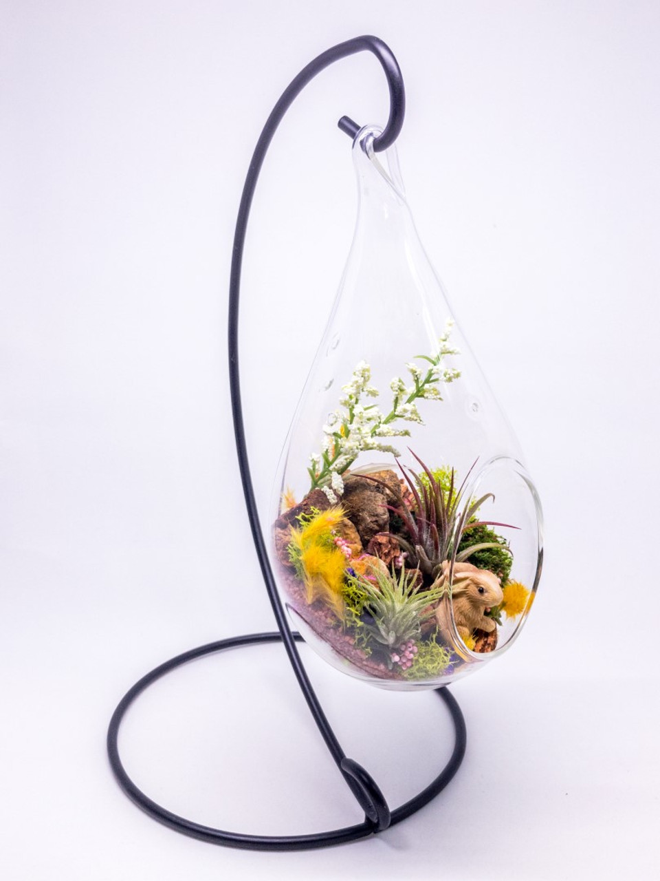 air plant terrarium kit nature series bunny hideaway with stand