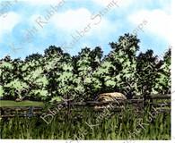 Wooded Farmland