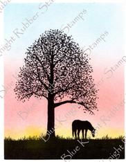 Silhouette Grazing Horse