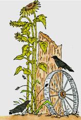 Crow on Wagon Wheel