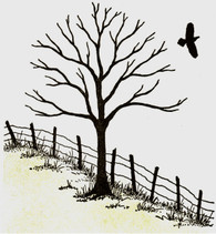 Tree/Fence and Bird