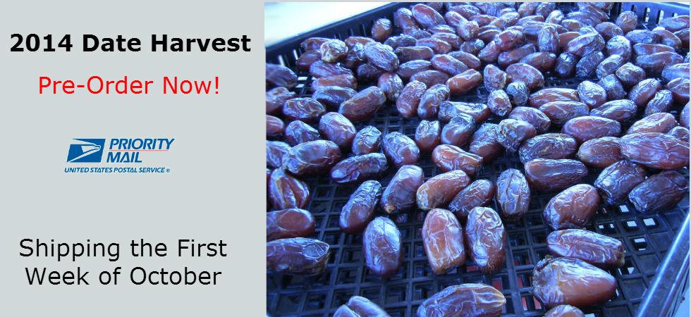 2014 Date Harvest