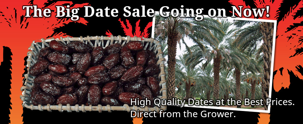 The Big Date Sale Going on Now!