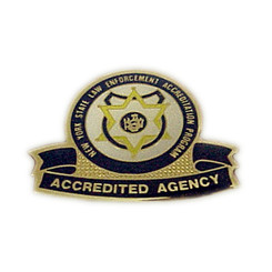 NYS Accreditation Program Pin