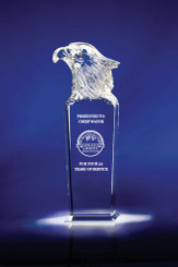Sky Master Optic Crystal Award 5