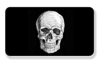 Skull Magnet - PACKAGE OF 4