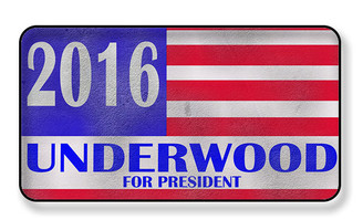 2016 Underwood For President Magnet - PACKAGE OF 4