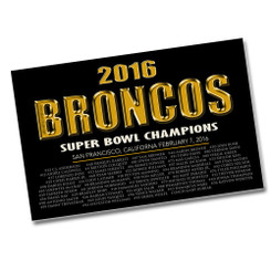 2016 Broncos Super Bowl Champions List of Players