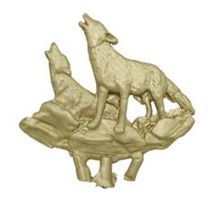 Coyotes On Ledge
