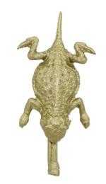 """1 1/2"""" Horned Frog"""
